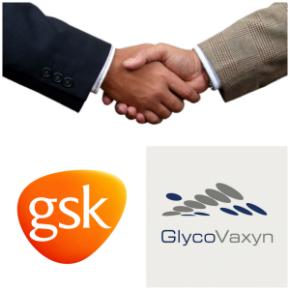Gsk- GlycoVaxyn
