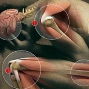 canale di patologia