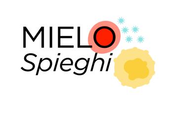 Logo_MIELO_Spieghi_42521